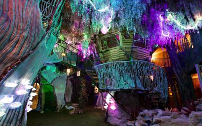 UNM students immerse in Meow Wolf internships